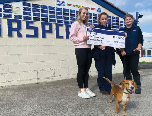HML Recycling donates £1,000 to struggling Lancashire East Branch of the RSPCA